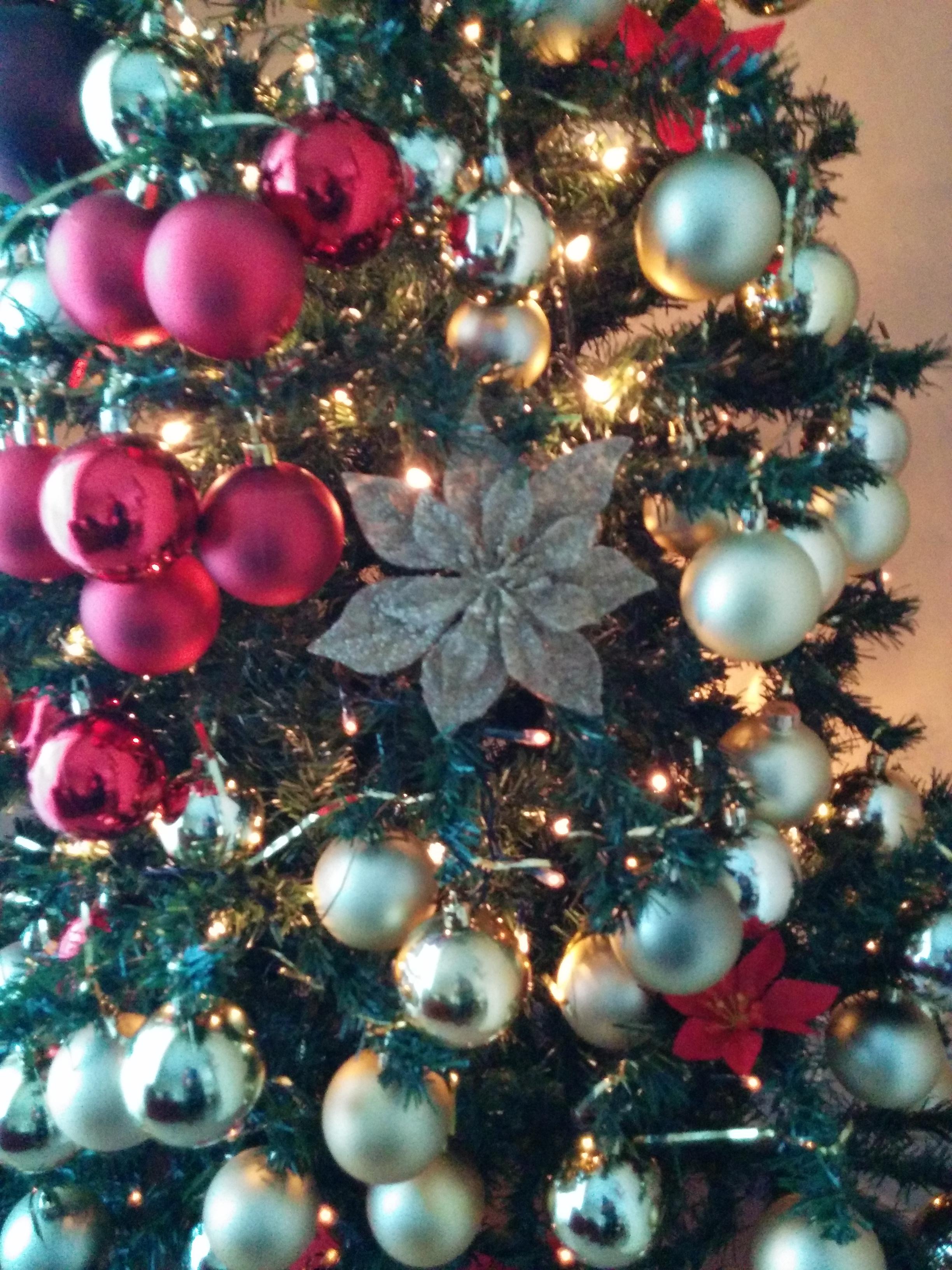 Bon Nadal 2015/Merry Christmas