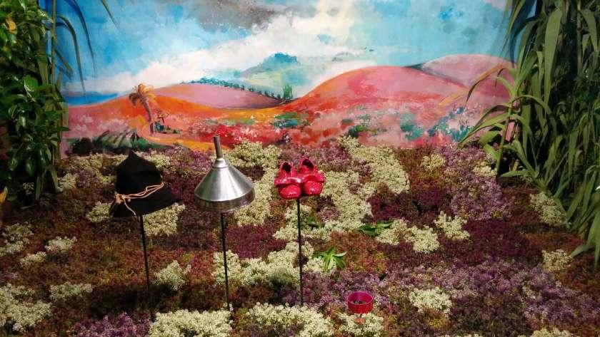 Girona/ Flors/ Flowers